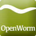 Openwormicon